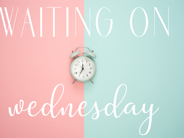 Waiting on Wednesday (7) : Out of Time by Monica McCarty