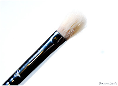 Sigma Brush E25