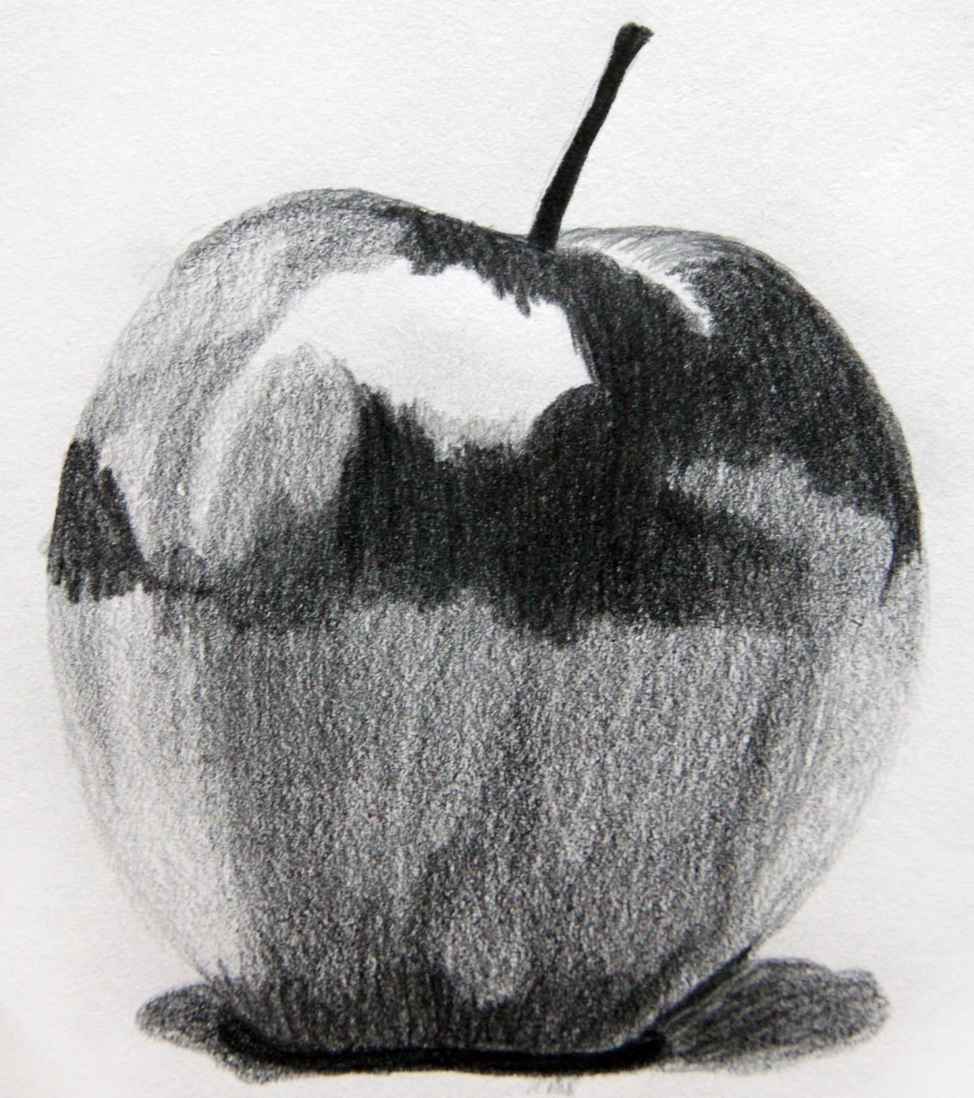 Dibujar Con Carboncillo Tecnica Del Lapiz
