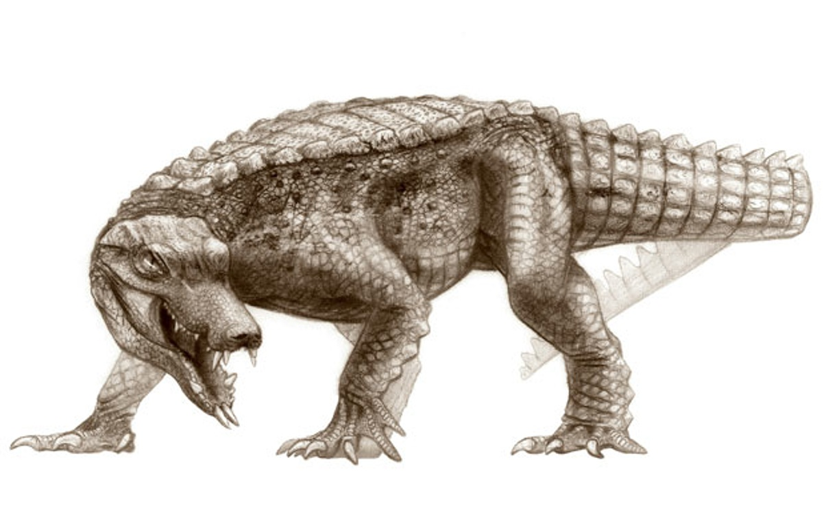 Fossil hunters unearth galloping, dinosaur-eating ...