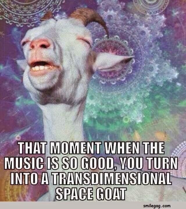 Goat Meme