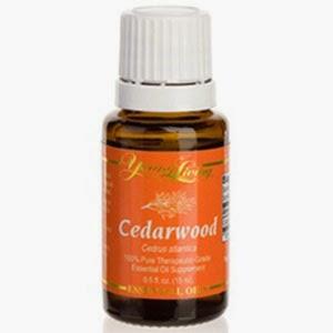 Ancient Essentials Part 1 Essential Oils For Children