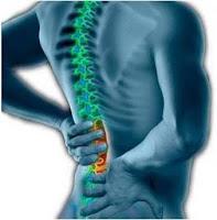 yoga untuk nyeri punggung