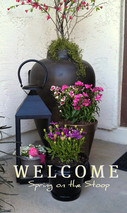 Focal Point Styling Welcoming Spring With A Garden