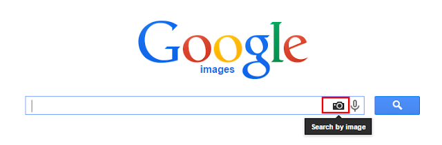 Googel Image Search, Google
