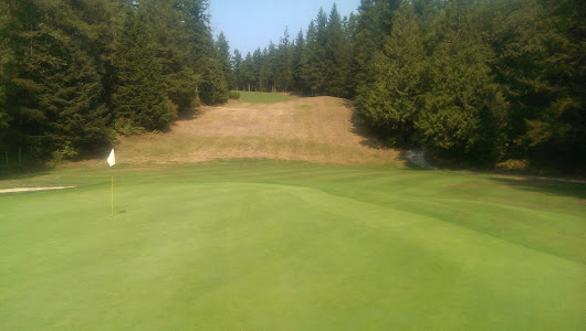 How reduced fertilizer has benefited my golf course.