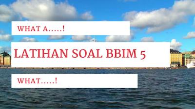 http://www.belajarbahasainggrismandiri.com/2017/01/latihan-soal-bbim-5-kata-seru-what-dan.html