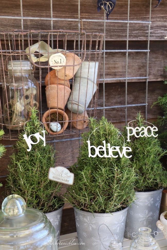 Christmas potting bench for keeping rosemary trees fresh