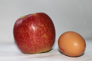 pomme+oeuf