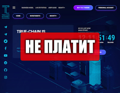 Скриншоты выплат с хайпа true-chain.io