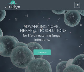 Amplyx Develop Novel Treatments For Life-Threatening Fungal Infections