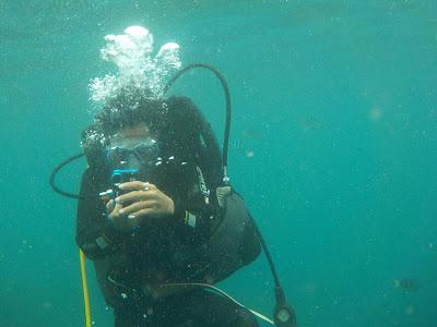 Nikon COOLPIX S33で撮った水中の写真