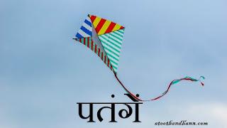 पतंगें