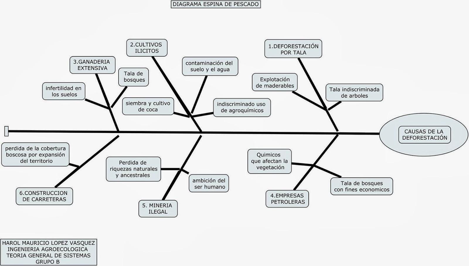 Trabajos Diagrama Espina De Pescado Causas De La