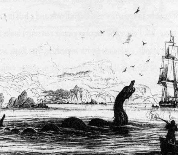 The Maned Sea Serpent
