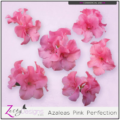 https://www.digitalscrapbookingstudio.com/commercial-use/elements/cu-azaleas-pink-perfection/