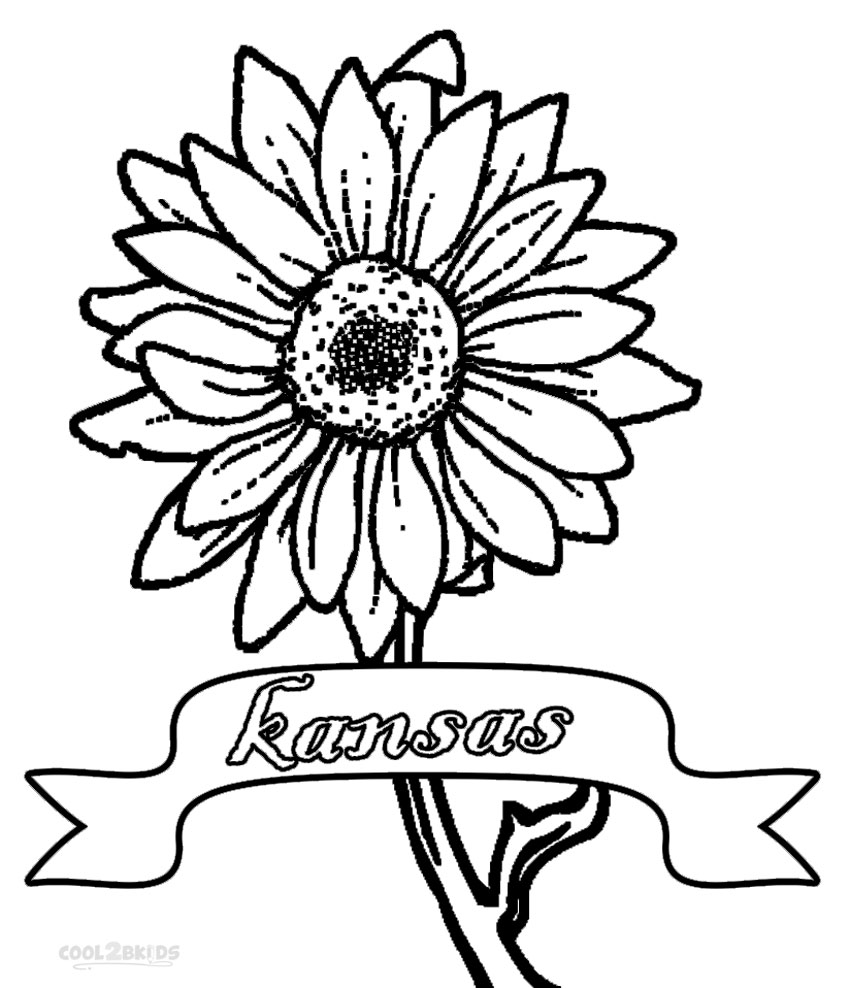 Unique Sunflowers Coloring Pages Images - Free Coloring Book Images