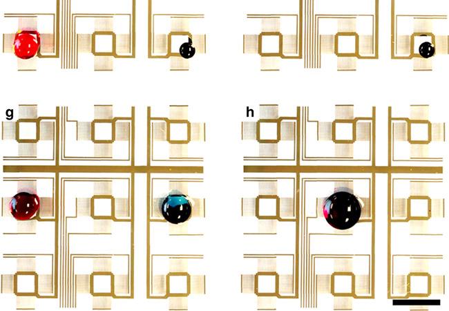 Penelitian Digital acoustofluidics to handle contactless and programmable fluids