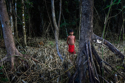 8 Photos: The Lives Of Amazonian Waiapi Tribe As They Battle Against Extinction Lifestyle