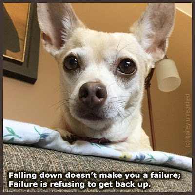 falling down doesn't make you a failure; failure is refusing to get back up