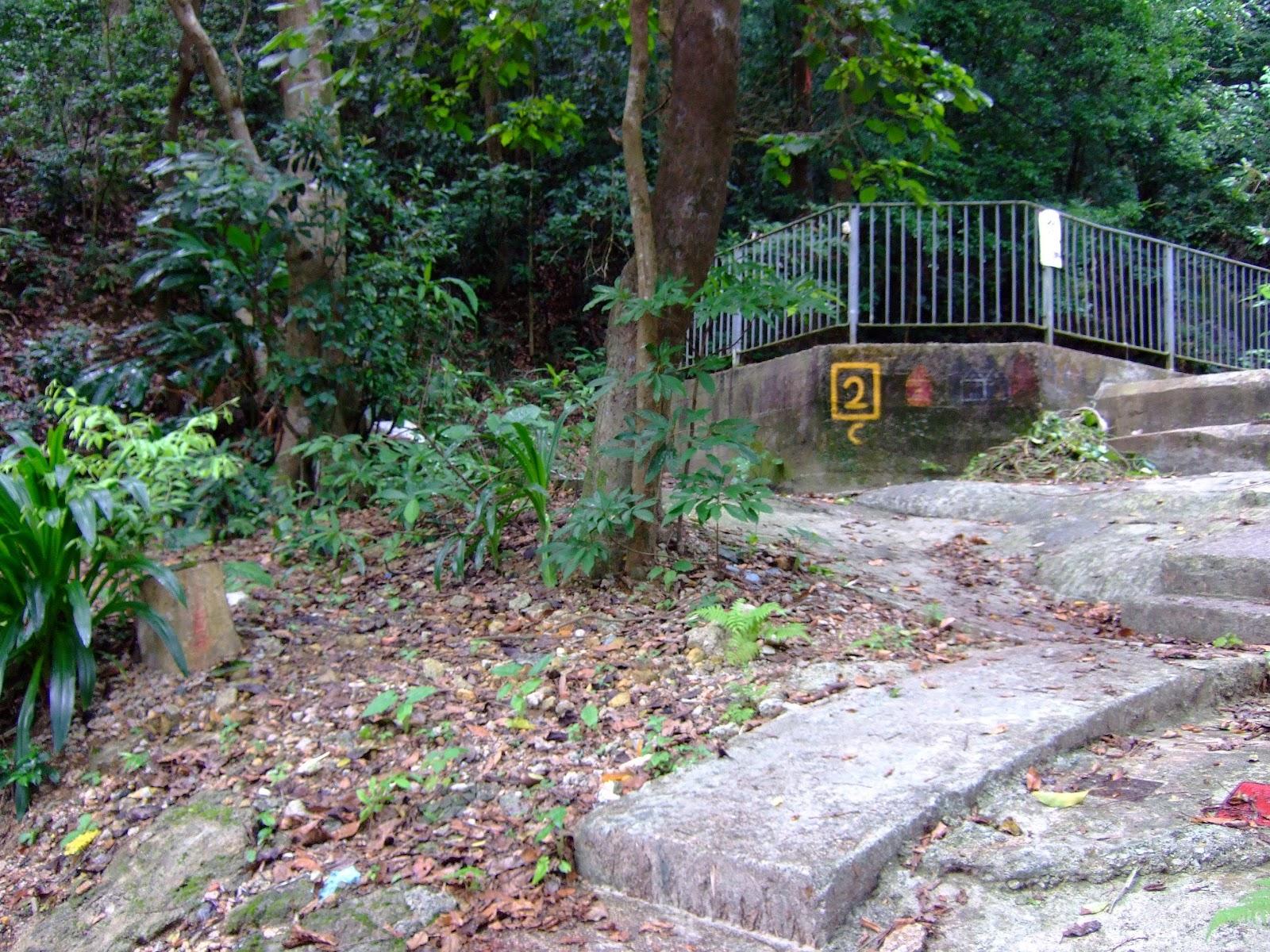 山水小組誌: 寶雲道-荷蘭徑-香港仔自然教育徑