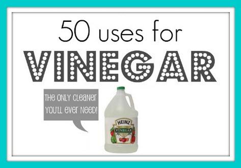 50 Uses For Vinegar Unordered List Adventures