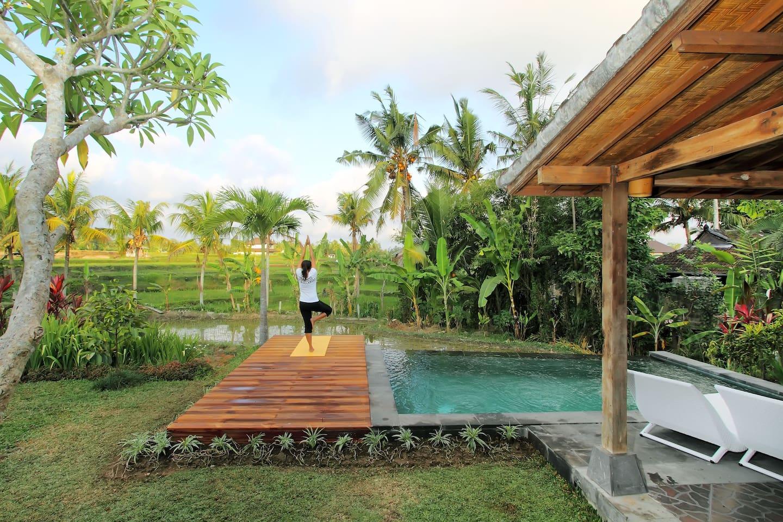 villa joglo dengan kolam renang pinggir sawah di bali