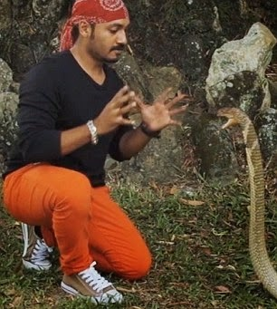 Amjad Khan has the ability to charm deadly cobra snakes by hypnotizing and believe it or not by kissing them!