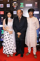 Bollywood Celebrities on the Red Carpet Of Zee Cine Awards 2017 Exclusive 110.JPG