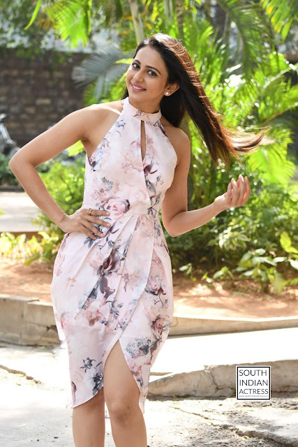 rakul preet singh khakee success meet 25.jpg