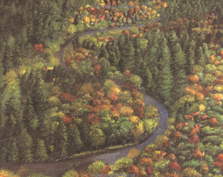 This blog post tells about the book A River Ran Wild by Lynne Cherry, and has a craft to go along with it. It's part of the Booking Across the USA series.
