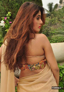 Sony-Charishta-Latest-Photos-in-Saree