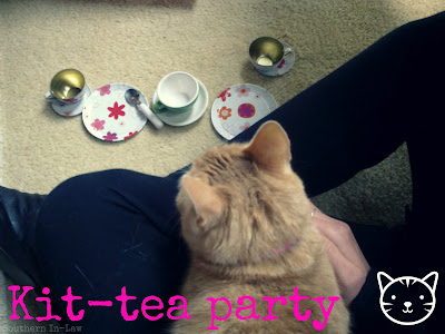 Tea party with cat