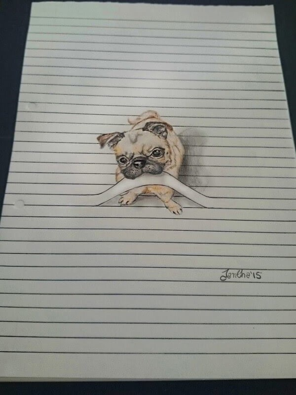 08-The-Pug-Iantha-Naicker-Drawing-of-Lines-and-Animals-www-designstack-co