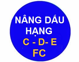 khóa học lái xe ô tô nâng hạng c, d,e,f,fc