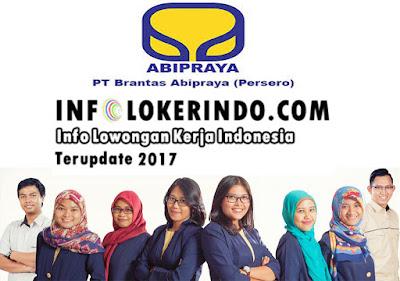 Lowongan Kerja PT. Brantas Abipraya (Persero) 2017