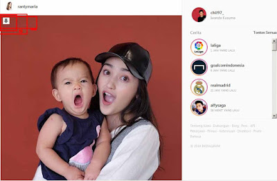 savefrom.net - download media dari instagram