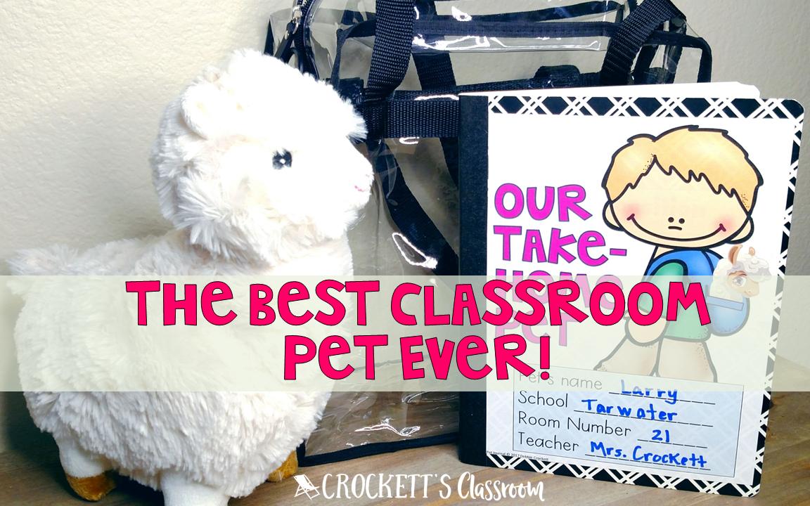Classroom Pet Ideas ~ The best classroom pet ever crockett s