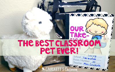 A stuffed animal is the very best classroom pet.  Kids love it and it's a great way to get kids to write in a home journal.