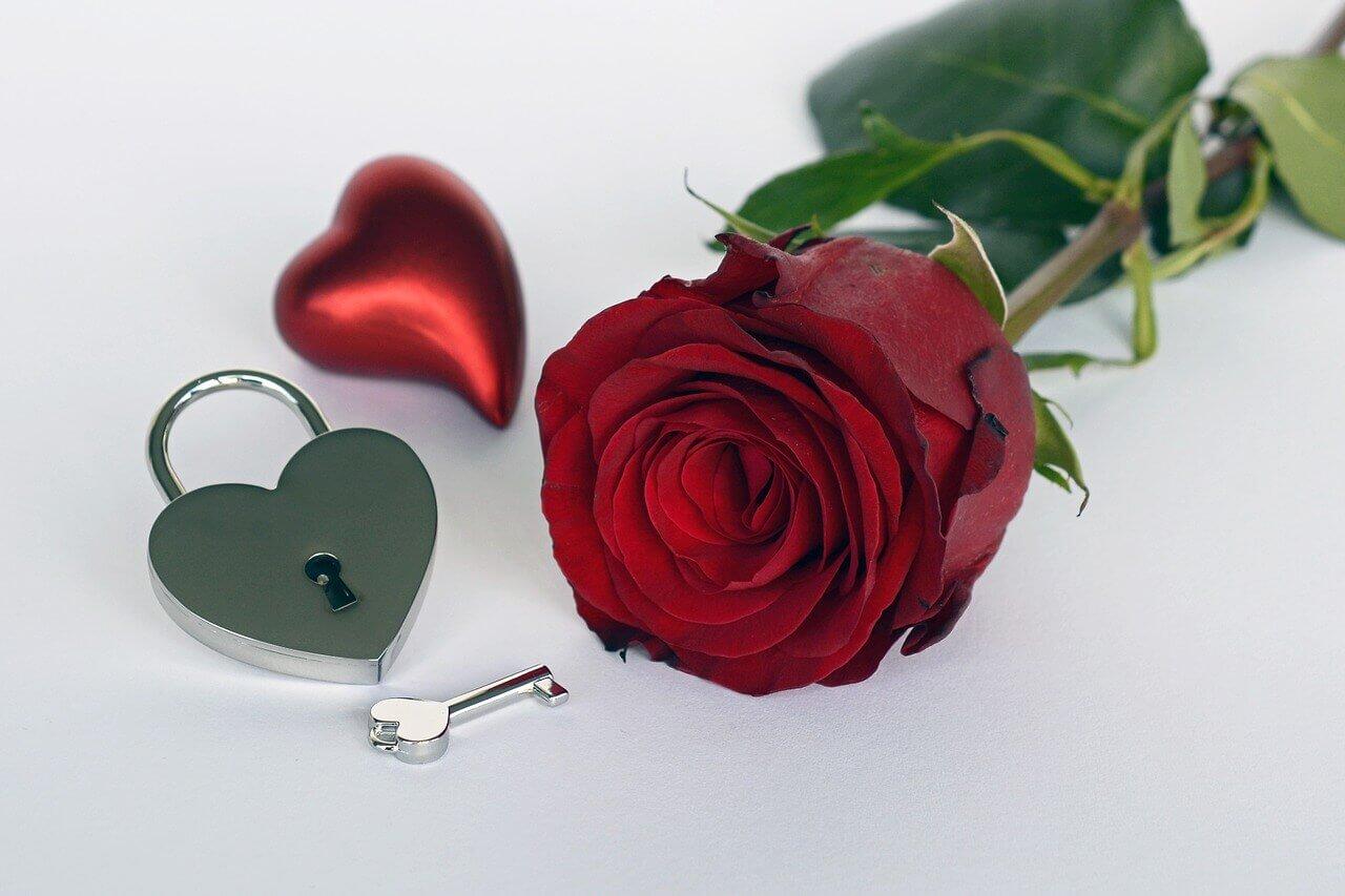Valentines Week List Rose Day