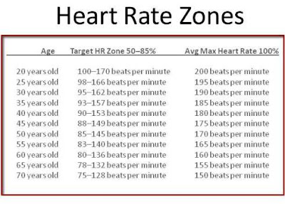 Age Heart Rate Zone