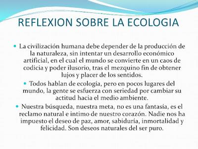 reflexión ecologia