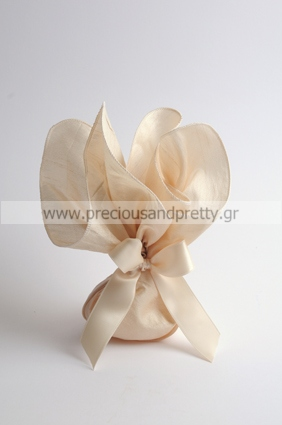 Champagne wedding favor silk bags