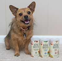 The Honest Kitchen Instant Bone Broth Review
