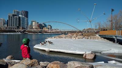 St. Patrick's Island, Calgary