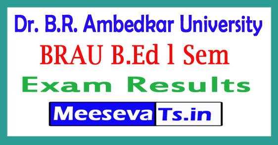 Dr. B.R. Ambedkar University B.Ed 1st Sem Results 2017