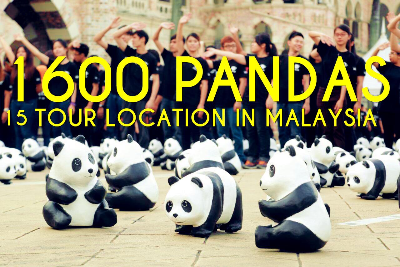 Panda Voodoo Iptv