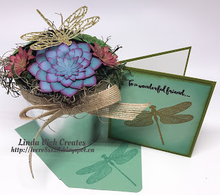 Linda Vich Creates: So Succulent Gift Set With Video Tutorial. Pot of trendy, colorful succulents with coordinating gift card that uses Dragonfly Dreams.