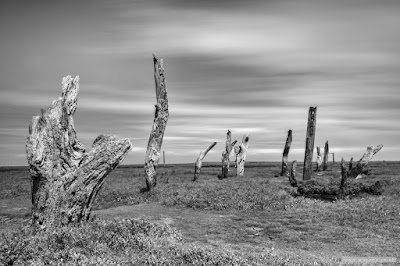 Thornham posts