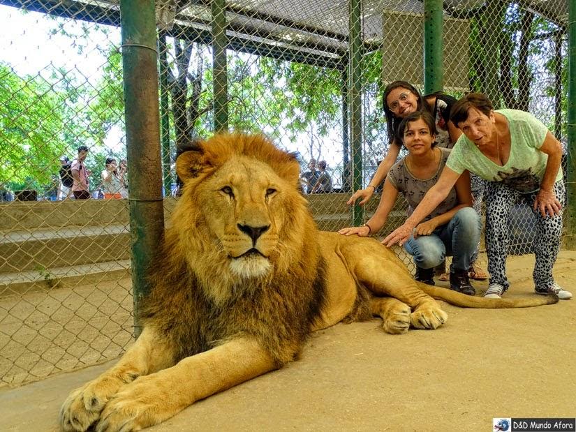 Zoo Luján perto de Buenos Aires (Argentina): Post índice